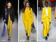 fall_winter_2018_2019_color_trends_ceylon_yellow.jpg